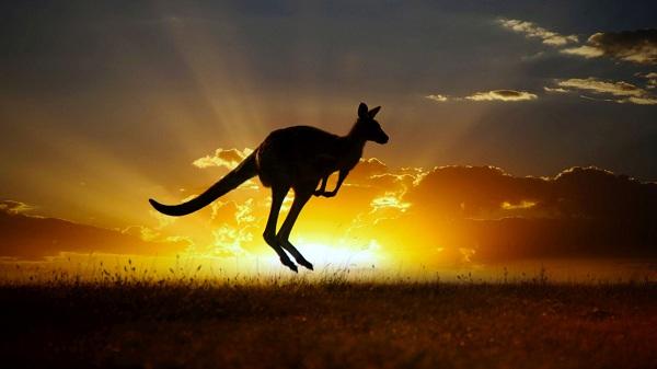 10 điều thú vị về nước Úc có thể sẽ làm bạn ngạc nhiên!