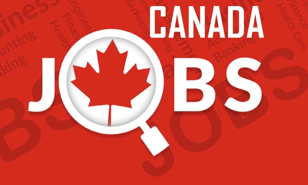 ngành nghề ở Canada