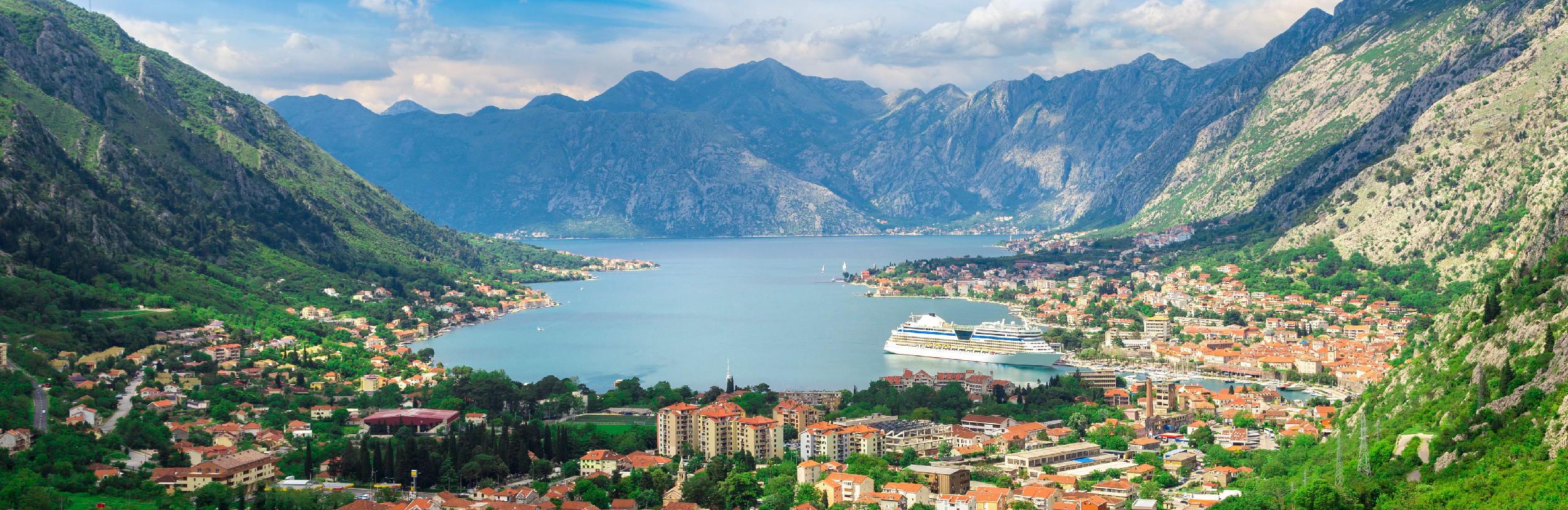 Công ty Việt Nam đầu tiên, duy nhất có hồ sơ đầu tư lấy quốc tịch Montenegro được chấp thuận Tiếng Việt English