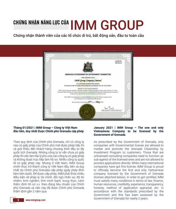 Brochure IMM Group 2021_12