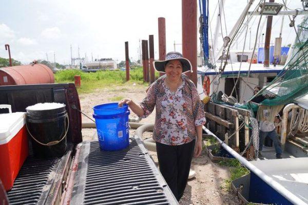 VnExpress – Cộng đồng người Việt thành điểm sáng tiêm chủng ở bang Mỹ