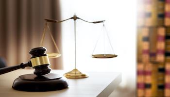 Đội ngũ Luật sư, Chuyên gia Cố vấn